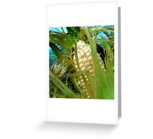 Late Summer Harvest Greeting Card