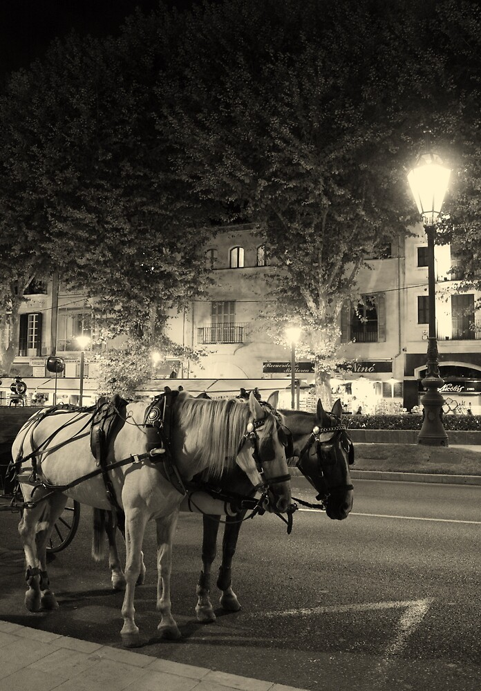 Carriage horses  by Esther  Moliné
