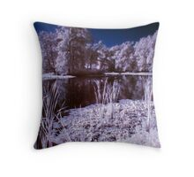 From Coast of Pond Throw Pillow