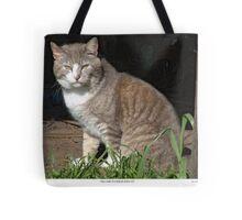 Tabby-Tux Feral Tomcat Tote Bag