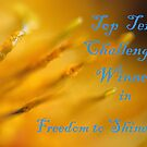Freedom to Shine Banner by SharonD
