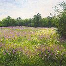 Meadow in June by Julia Lesnichy