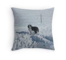 Snow Panda Throw Pillow