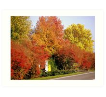 Autumnal Brightness Art Print