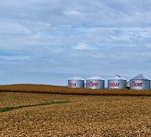 Grain Bins by Sandy Keeton