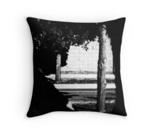 Framing the Subject Throw Pillow