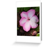 Lonely Flower! Greeting Card