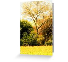 Digital brush strokes Greeting Card