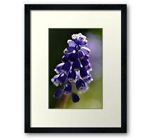 Light of blue Framed Print