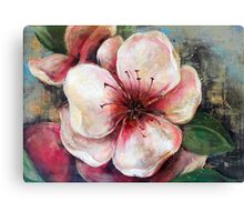Gentleness - Peach Canvas Print