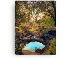 Autumnal Garden   Canvas Print