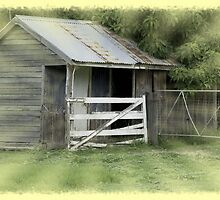 """""""Milking shed and room"""" by Norma-jean Morrison"""
