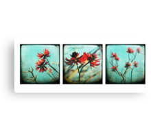 red on blue Canvas Print