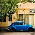 Blue Volkswagen Beetle by Sam Scholes