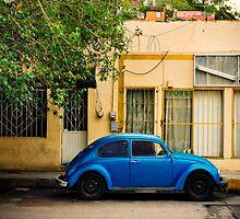 Blue Volkswagen Beetle by Sam Scholes