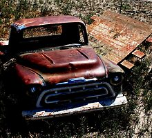 '56 Chevy stuck in the mud since 1980... by ThomHull