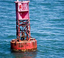 Buoy Oh Buoy!! by phil decocco