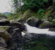 Small Waterfall at Dougan Falls by Isaac Daily