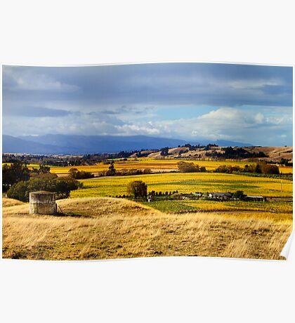 Autumn Vineyards Poster