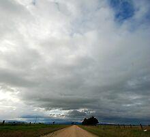 down dirt road by Tamara Cornell