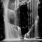 Mckenzie Falls by Jeff Reid