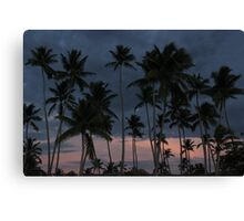 Las Terrenas, Dominican Republic Canvas Print