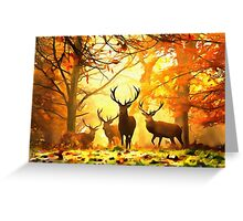 Forest 25 Greeting Card