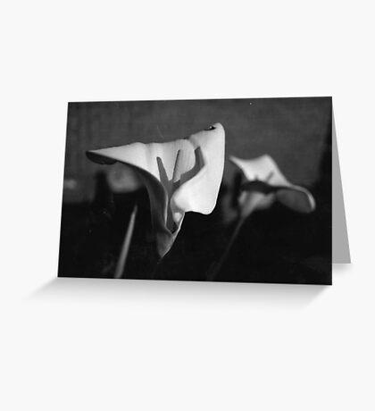 My Flower Photo Greeting Card