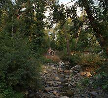 Park Rila by Anina Arnott