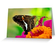 Rest for Now Greeting Card