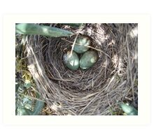 Nest in the forest Art Print