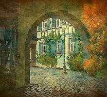 Autumn in beautiful Germany by Marie Luise  Strohmenger