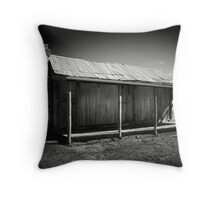 pioneer's abode Throw Pillow