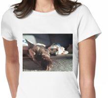 Sleepy Devon Rex Kitten Womens Fitted T-Shirt