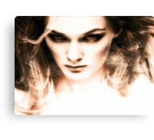The visions of Laura Means. Canvas Print