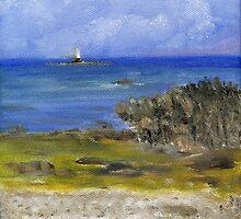 Kearney Point by Les Sharpe