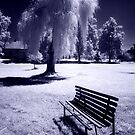 The Bench I Wait For You by Ethem Kelleci
