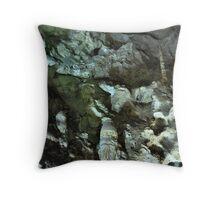 Carlsbad Caverns Detail Throw Pillow