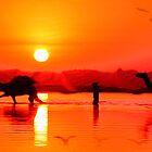 Sweat of the Sun by Neophytos