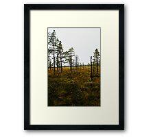 My beloved forrest 2 Framed Print