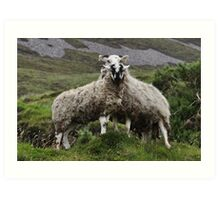 Wilds of Donegal Art Print