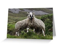 Wilds of Donegal Greeting Card
