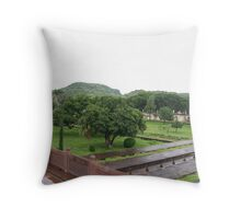 touch of nature Throw Pillow