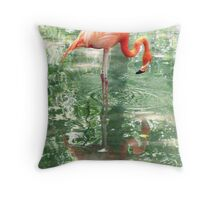 Florida Flamingo Throw Pillow