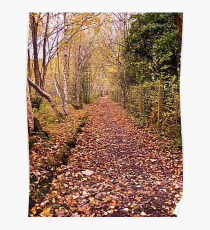 Autumn Footpath Poster