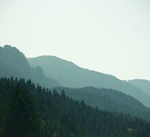 Hazy Hills - Columbia River by Nick Mann
