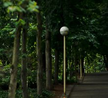 Street Lamps - Portland, OR by Nick Mann