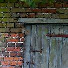 The Old Door by brianfuller75