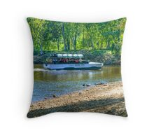 Duck of a Different Feather Throw Pillow