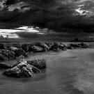 Forgotten Sea by Saverio Savio